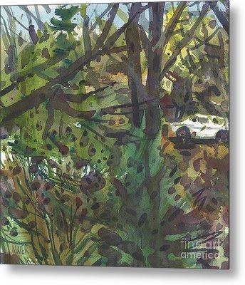 Backyard View Metal Print by Donald Maier