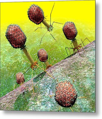 Bacteriophage T4 Virus Group 2 Metal Print