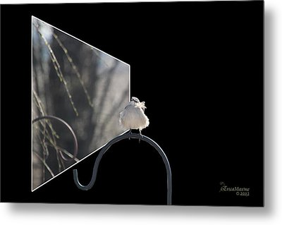Bad Feather Day Metal Print by EricaMaxine  Price