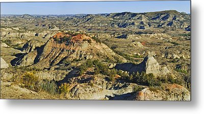 Bad Lands  Metal Print by Michael Peychich