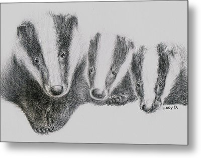 Metal Print featuring the drawing Badgers by Lucy D