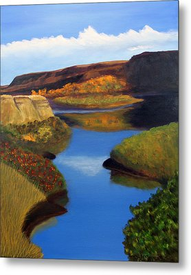 Badlands River Metal Print by Janet Greer Sammons