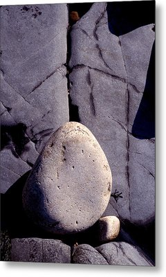 Balancing Act Metal Print by Brent L Ander