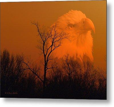 Bald Eagle Spirit Of Reelfoot Lake Metal Print