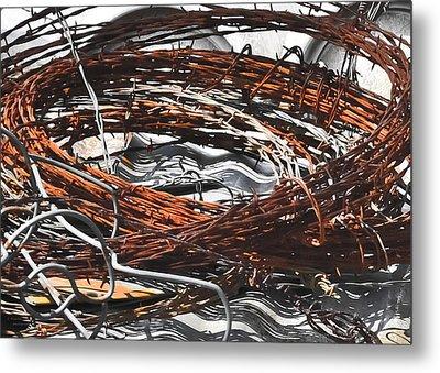 Barbed Metal Print by Teresa Dixon