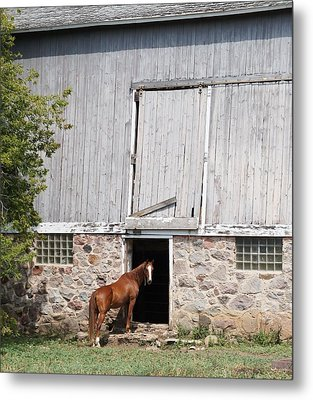 Metal Print featuring the photograph Barn And Horse by Kristine Bogdanovich
