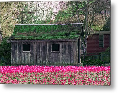 Barn Intensified Metal Print
