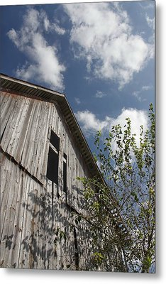Barn To Be Wild Metal Print