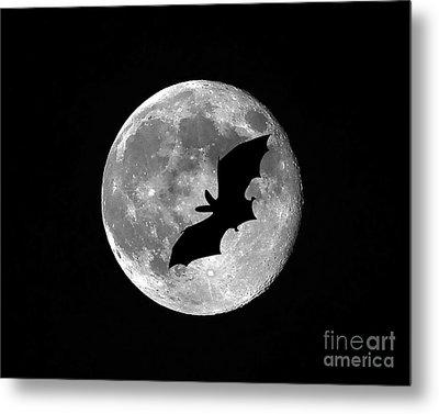 Bat Moon Metal Print by Al Powell Photography USA