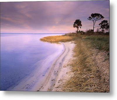 Beach Along Saint Josephs Bay Florida Metal Print by Tim Fitzharris