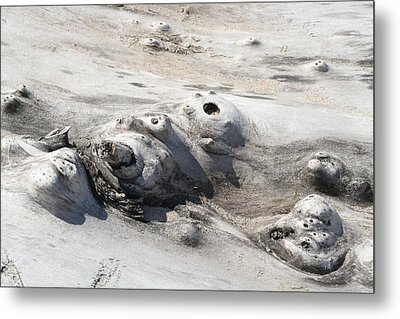 Beach Driftwood II Metal Print by Peg Toliver