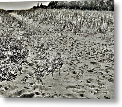 Metal Print featuring the photograph Beach Path by Lin Haring