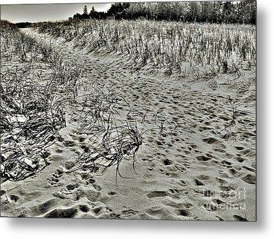 Beach Path Metal Print by Lin Haring