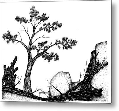 Beach Pine Metal Print by Jason Carroll
