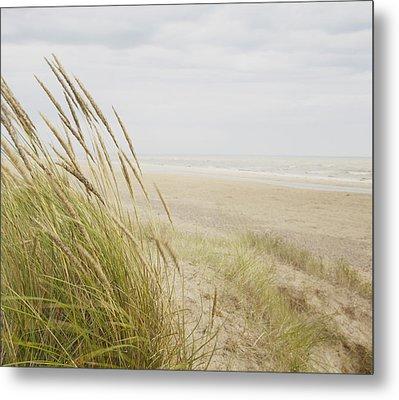 Beachscape 8 Metal Print by Ben Richardson