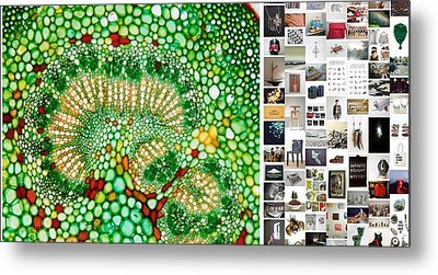 Beads Of Green Metal Print by Holley Jacobs