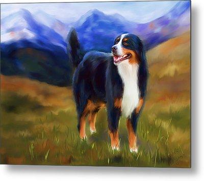 Bear - Bernese Mountain Dog Metal Print by Michelle Wrighton