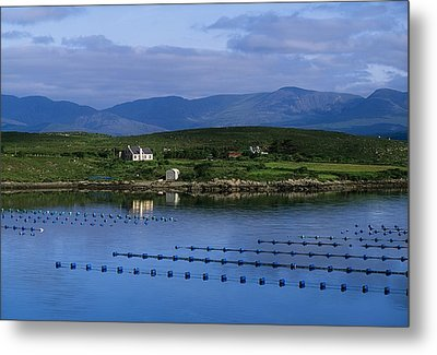 Beara, Co Cork, Ireland Mussel Farm Metal Print by The Irish Image Collection