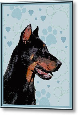 Beauceron Metal Print by One Rude Dawg Orcutt