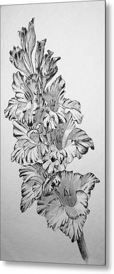 Metal Print featuring the painting Beautiful Gladiolas by Eleonora Perlic