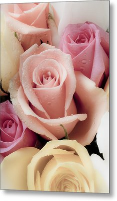 Beautiful Roses Metal Print by Garry Gay