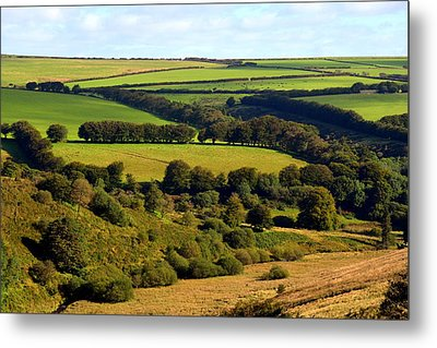 Beautiful Somerset Metal Print by Carla Parris