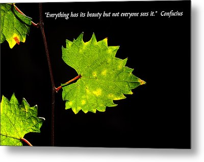 Beauty And Confucius Metal Print by David Lee Thompson