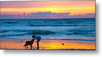 Metal Print featuring the photograph Bella At Sunrise by Alice Gipson