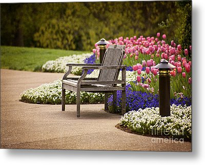 Bench In The Park Metal Print by Cheryl Davis