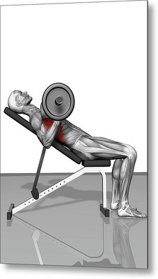 Bench Press Incline (part 2 Of 2) Metal Print by MedicalRF.com