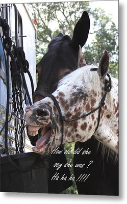 Benson Mule Day Birthday Card Photo Metal Print by Travis Truelove