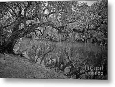 Metal Print featuring the photograph Bent Oak River Reflection by Larry Nieland