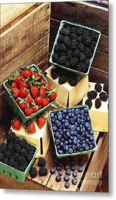 Berries Metal Print by Photo Researchers