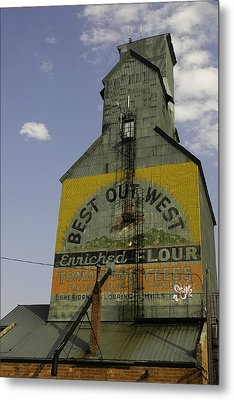 Best Out West Metal Print by Kenneth McElroy