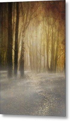Beware Misty Woodland Path Metal Print by Meirion Matthias