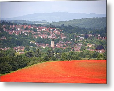 Bewdley On Poppy Metal Print