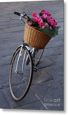 Bicycle In Lucca Italy Metal Print by Bob Christopher