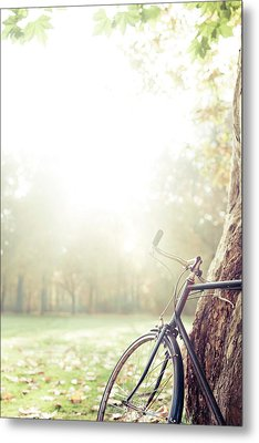 Bicycle Leaned On Big Tree In Sunlight. Metal Print by Guido Mieth