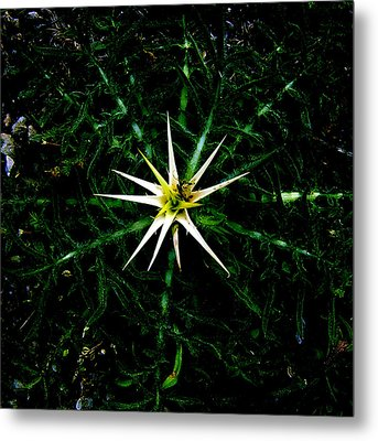 Big Bang Metal Print by Guadalupe Nicole Barrionuevo