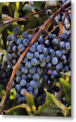 Big Bunch Of Grapes Metal Print by Michael Flood