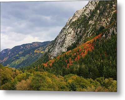 Big Cottonwood Canyon 2 Metal Print by Bruce Bley