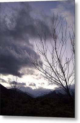 Metal Print featuring the photograph Big Morongo Canyon by Christine Drake