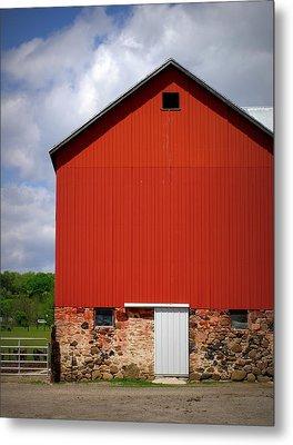 Big Red Metal Print by Linda Mishler