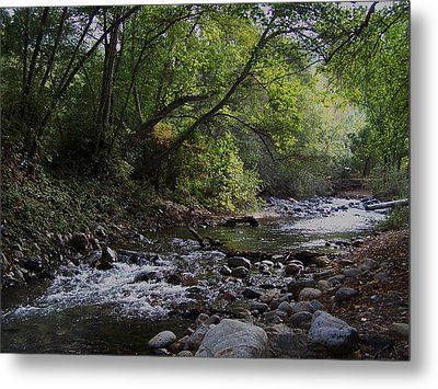 Metal Print featuring the photograph Big Sur River by Christine Drake