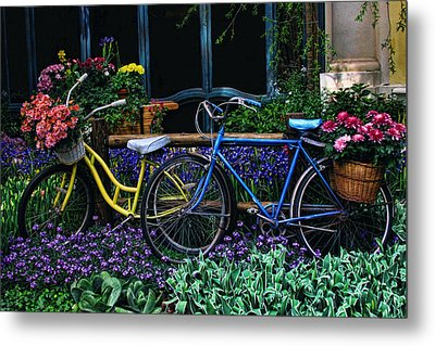 Metal Print featuring the photograph Bike Ride by Tammy Espino