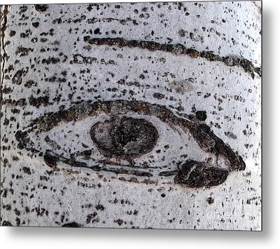 Birch Bark All-seeing Eye Metal Print by Janeen Wassink Searles