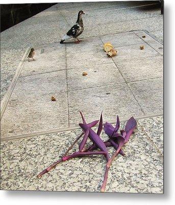 Bird And Flowers Metal Print by Todd Sherlock