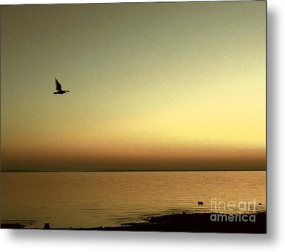 Bird At Sunrise - Sepia Metal Print