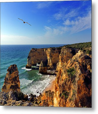 Bird In Flight  At Marinha Beach Metal Print
