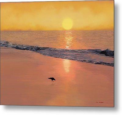 Bird On The Beach Metal Print by Tim Stringer
